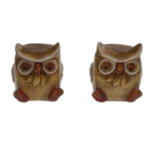 French Country Chic Collectable Novelty Salt and Pepper Set BROWN OWLS New