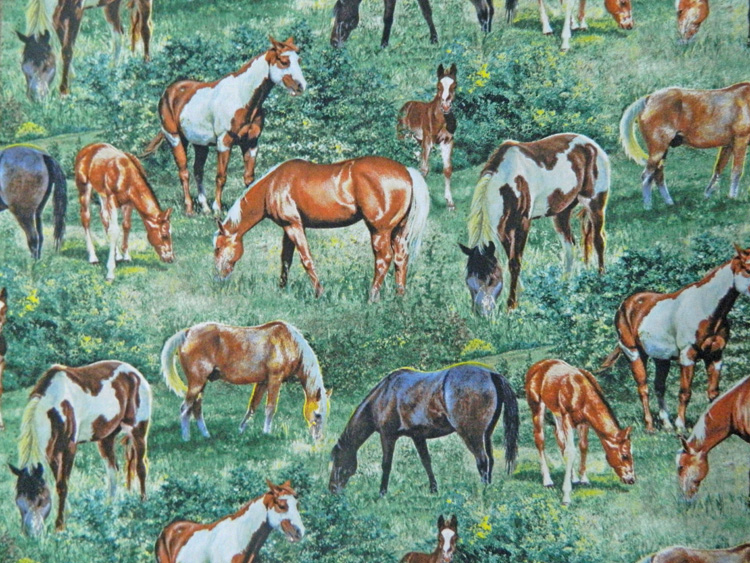 Patchwork Quilting Sewing Fabric VALLEY CREST HORSES Allover Material 50x55cm New