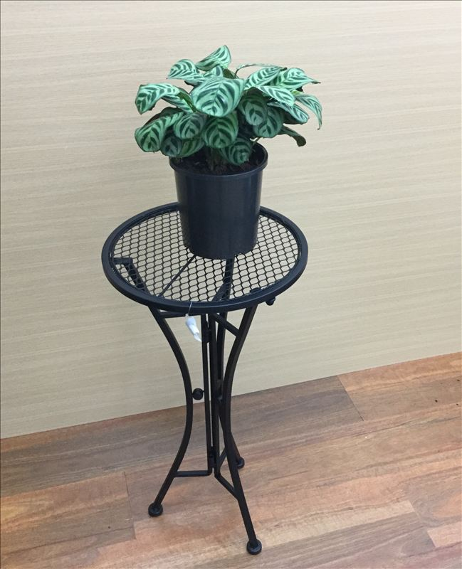 French Country Vintage Inspired Wrought Iron BLACK ROUND Side Table Plant Holder NEW