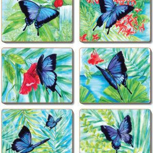 Country Kitchen ULYSSES BUTTERFLY Cork Backed Placemats or Coasters Set 6 NEW Cinnamon