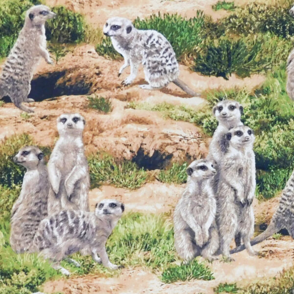 Patchwork Quilting Sewing Fabric AFRICAN MEERKATS Material 50x55cm FQ Cotton New