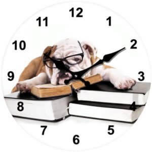 French Country Chic Retro Inspired Wall Clocks 17cm BULLDOG DOG New Time