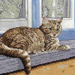 DMC Cross Stitch Kit A FAVOURITE PLACE Counted X-Stitch with Aida and Threads New - BK1436