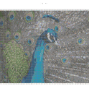 Cross Stitch Pattern PEACOCK PARADE New X Stitch Gwen Street Designs New