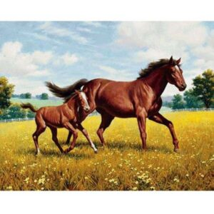 5D Diamond Painting Square Drills HORSES IN FIELD incl Canvas, Beads, Applicator New