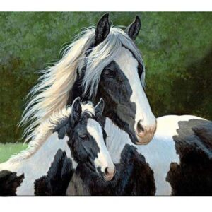 5D Diamond Painting Square Drills HORSE AND FOAL incl Canvas, Beads, Applicator New