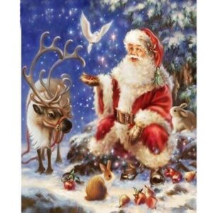 5D Diamond Painting Square Drills SANTA CLAUS incl Canvas, Beads, Tool New