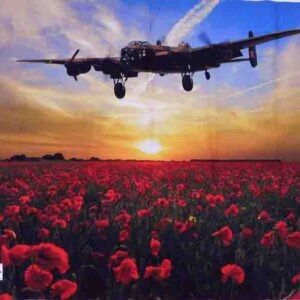 Patchwork Quilting Sewing Fabric ANZAC FIELD OF THE FALLEN Panel 67x110cm New
