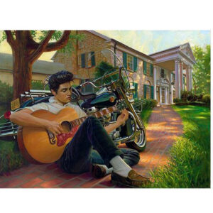 5D Diamond Painting Square Drills ELIVS PLAYING GUITAR incl Canvas, Beads, Tool New