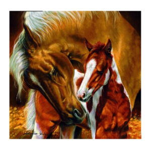 5D Diamond Painting Square Drills HORSE AND FOAL incl Canvas 35x35cm New