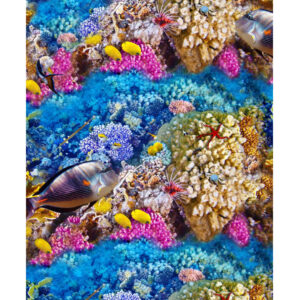 Patchwork Quilting Sewing Fabric GREAT BARRIER REEF Allover 50x55cm FQ New
