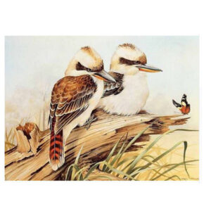 5D Diamond Painting Full Image Square Drills KOOKABURRAS 25x35cm New