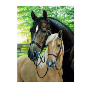 5D Diamond Painting Full Image Square Drills TWO HORSES 20x25cm New