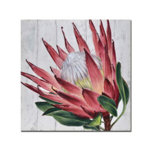French Country Stretched Canvas Print Large PROTEA Painted Print 50x50cm New