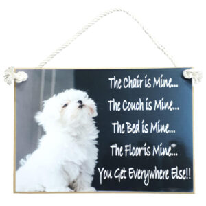 Country Printed Quality Wooden Sign DOG THE CHAIR IS MINE Plaque New