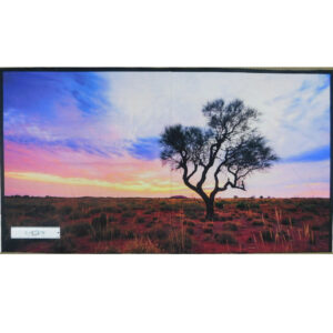 Patchwork Quilting Sewing Fabric AUSTRALIAN OUTBACK TREE Panel 60x110cm New