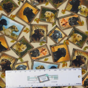 Quilting Patchwork Sewing Fabric LOVEABLE LABS DOGS FRAMED 50x55cm FQ New