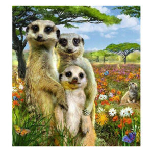 5D Diamond Painting Full Image Square Drills MEERKATS 40x50cm