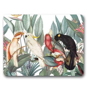 Kitchen Cork Backed Placemats AND Coasters LUSH BIRDS Set 6 New