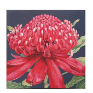 French Country Canvas Floral Print Australian WARATAH 1 50x50cm