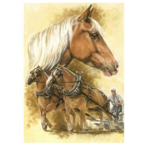 5D Diamond Painting Full Image Squares CLYDESDALES 40x30cm