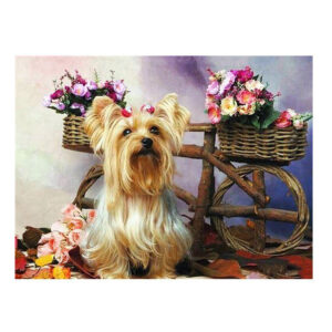 5D Diamond Painting Full Image Square Drills SILKY TERRIER 50X40cm