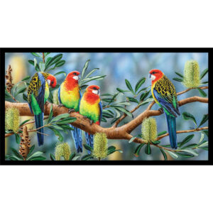 Patchwork Quilting Sewing Fabric Australian Rosellas Panel 59x110cm
