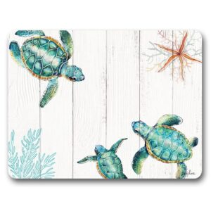 Kitchen Cork Backed Placemats AND Coasters THREE TURTLES Set 6