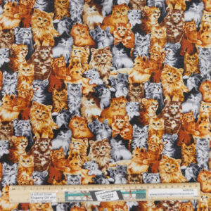 Quilting Patchwork Sewing Fabric Purr-Fect Kittens 50x55cm FQ Material