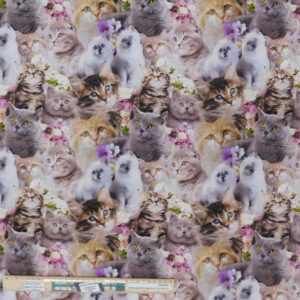 Quilting Patchwork Sewing Fabric Cute Kittens Collage 50x55cm FQ