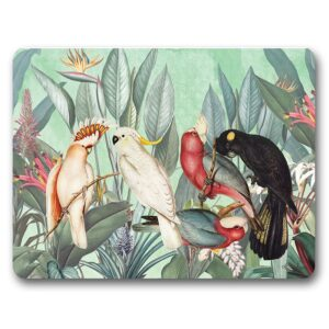 Kitchen Cork Backed Placemats AND Coasters Parrots Birds Set 6