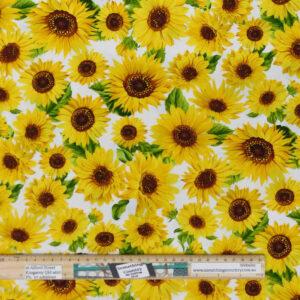 Quilting Patchwork Sewing Fabric Sunflower Garden 50x55cm FQ