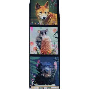 Patchwork Quilting Dingo Possum Devil Panel 40x110cm Fabric