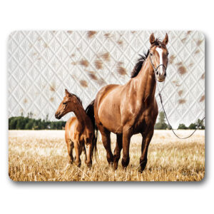Kitchen Cork Backed Placemats AND Coasters Soul Chestnut Horses Set 6