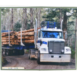 Patchwork Quilting Sewing Fabric Logging Truck 2 Panel 92x110cm